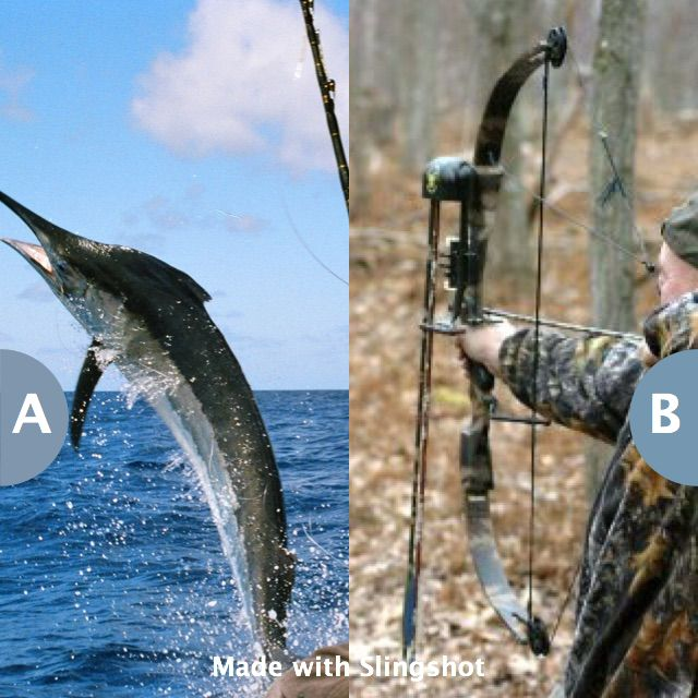 Rather go on a fishing or a hunting trip? Click here to vote @ http://getslingshotapp.com/share/95468