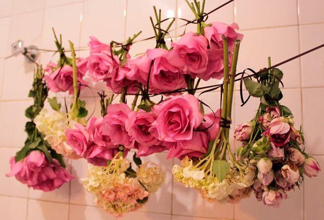 secagem de flores