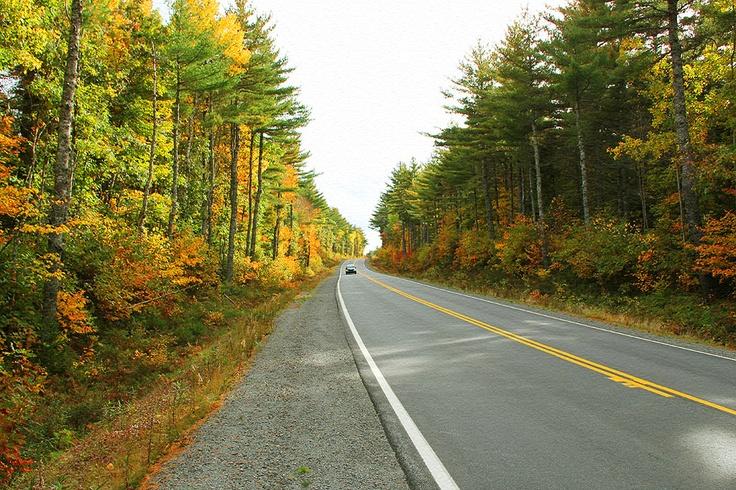Kejimkujik Scenic Drive, Route 8, near Liverpool, Nova Scotia. An amazing drive this time of the year.