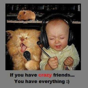 Funny Friendship Quotes – Best Inspiring, Cute & Funny BFF Quotes