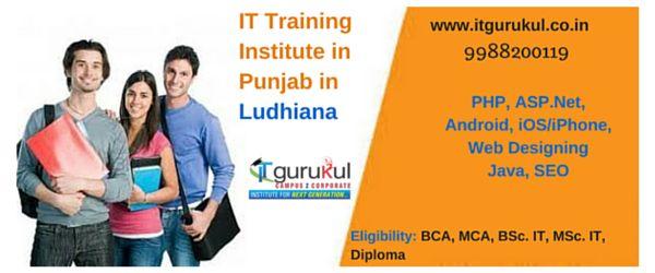 IT Training Institute in Punjab