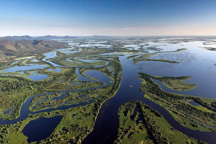 Brazil's Pantanal - the world's biggest wetland: in pictures. Andre Dib/WWF