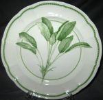 Richard Ginori Sage Salad Plate