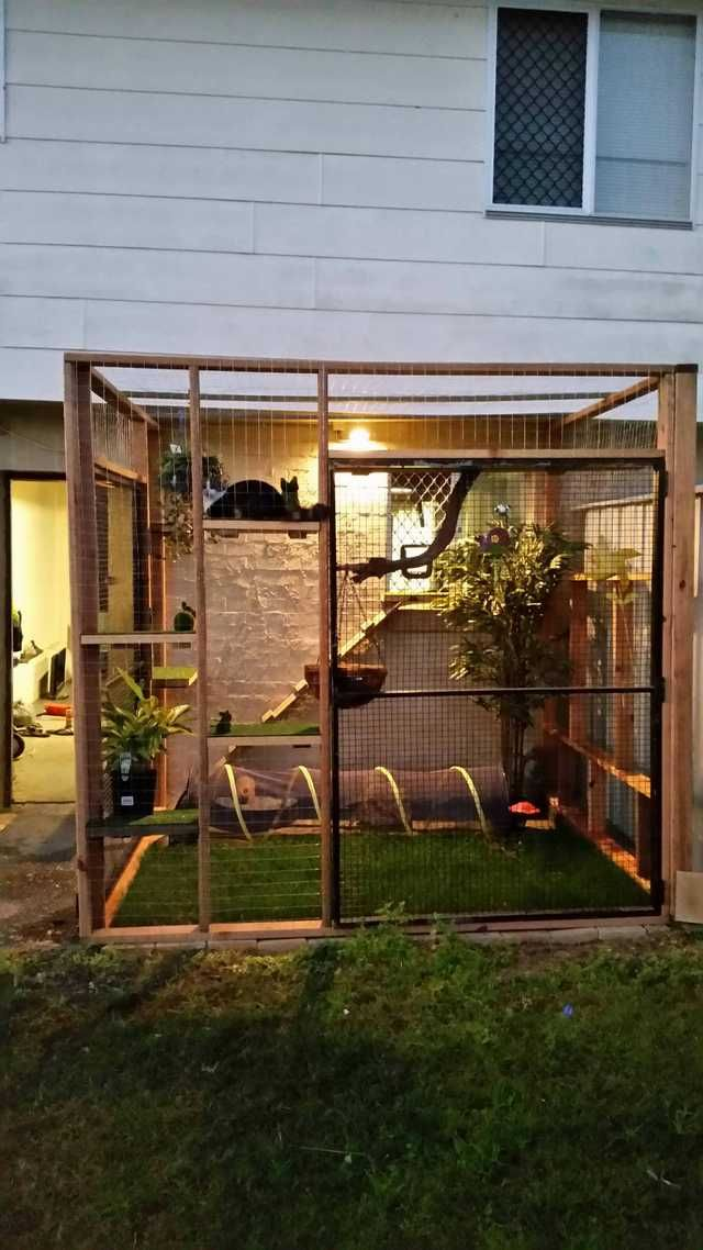 Catio For Our Indoor Kitty Outdoor Cat House Cat Patio Outdoor Cat Enclosure