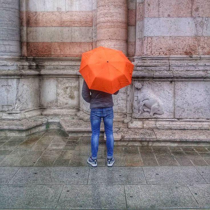 #colors #rain #downtown #igersferrara #comunediferrara Della pioggia basterebbe coglierne il ritmo. by camoz_