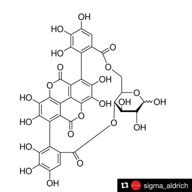 #Repost @sigma_aldrich  Punicalin is a natural product of some plants including Terminalia catappa L. the tropical almond. It has been shown to have some anti-inflammatory activity. Check out the link in the bio for more information. #naturalproducts #almonds #totallytropical #sigmaaldrich #chemistry #chemicals #moleculeoftheday #science #laboratory #sial #67988