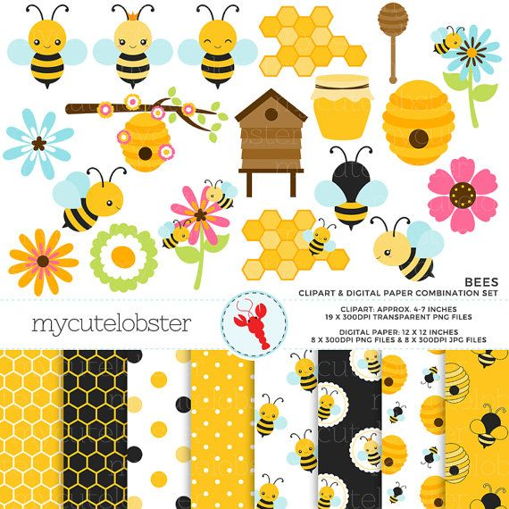 Bees Clipart & Digital Paper Set clip art by mycutelobsterdesigns