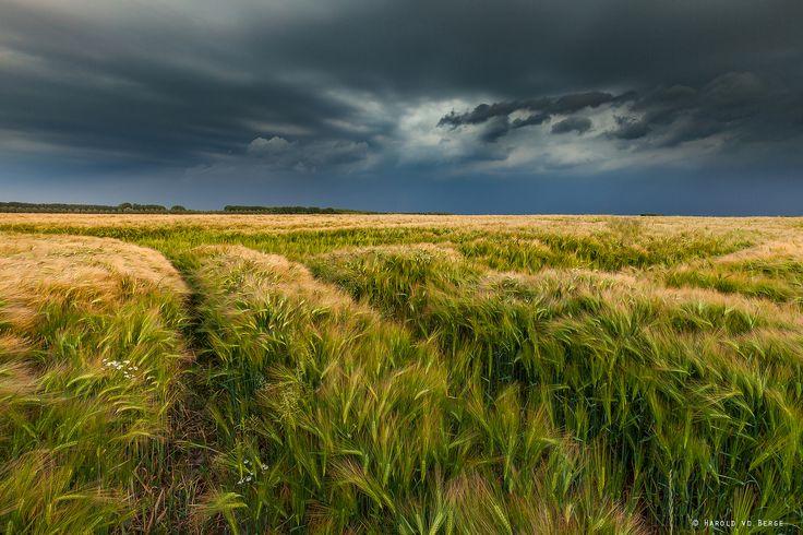 https://flic.kr/p/H1iQyf | Thunderstorm | Last night at a barley field.  Lee ND 0.6 Hard Grad