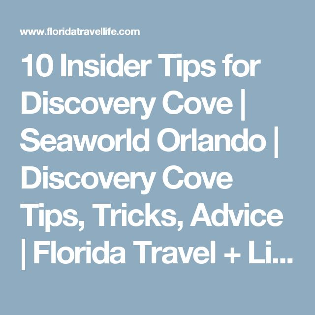 10 Insider Tips for Discovery Cove | Seaworld Orlando | Discovery Cove Tips, Tricks, Advice | Florida Travel + Life