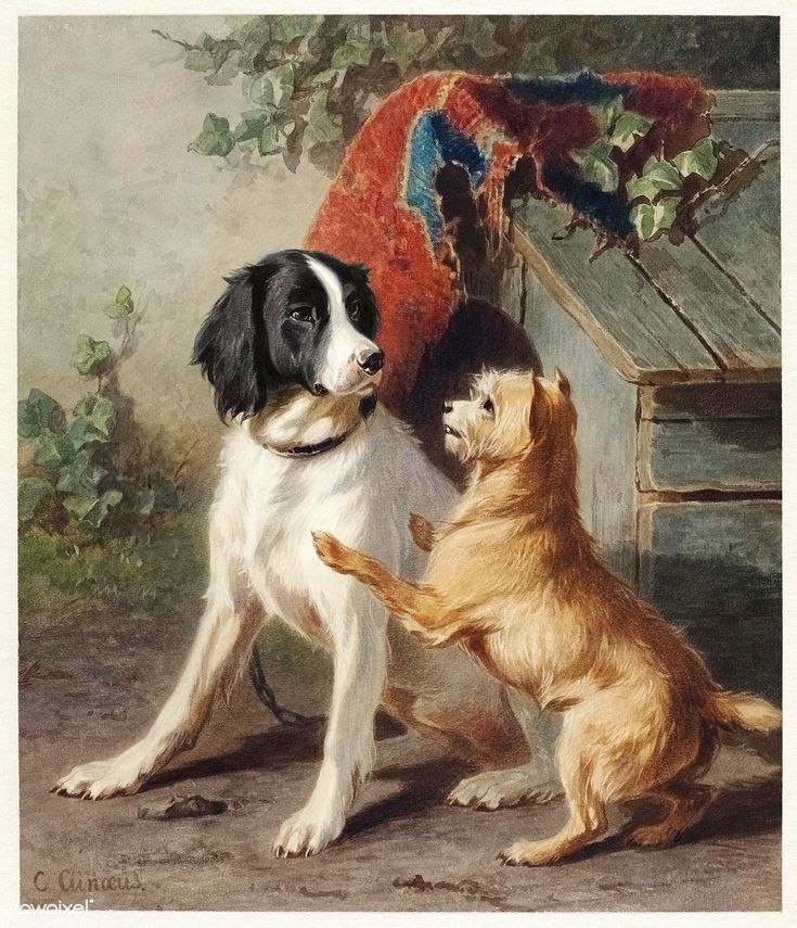 Two Dogs By A Kennel By Conradijn Cunaeus 1828 Ndash 1895