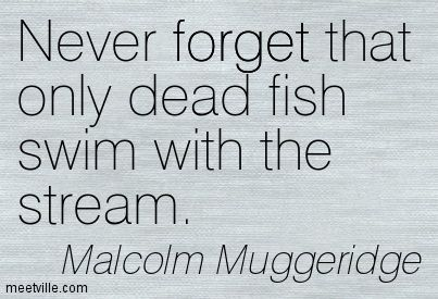 Never forget that only dead fish swim with the stream - Malcolm Muggeridge