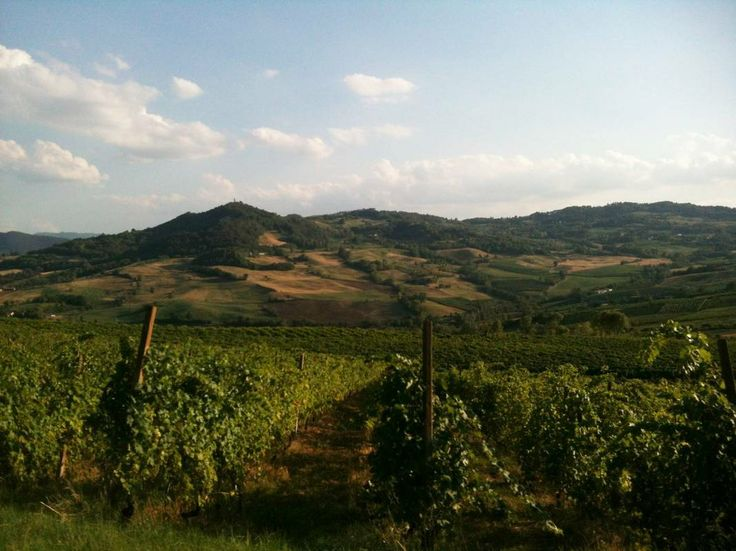 Val Tidone, Piacenza - Italy  - http://earth66.com/rural/val-tidone-piacenza-italy/