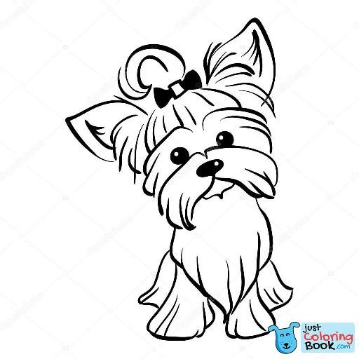 Funny Yorkshire Terrier Coloring Pages For Free Yorkshire Desenho Desenhos Bonitos Yorkshire Terrier Dog