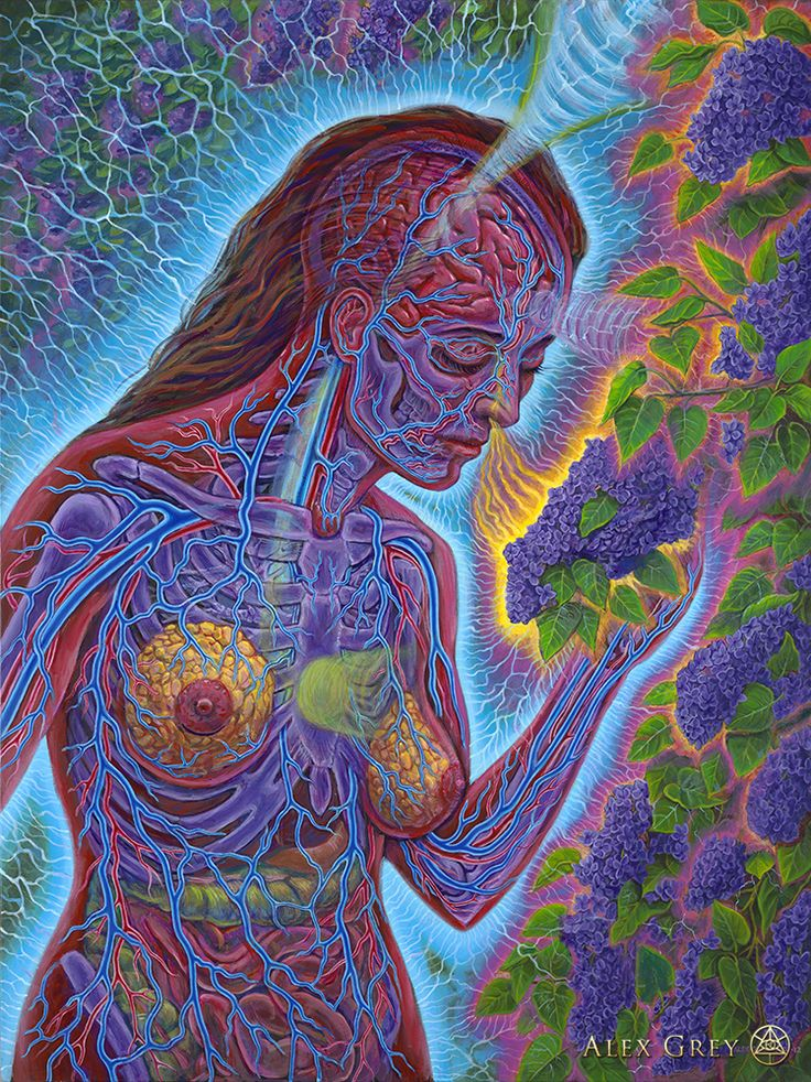 ☆ Lilac :¦: Artist Alex Grey ☆ Anyone who has smelled a Lilac knows how great it feels.