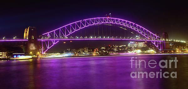 The #Purple #Coathanger by #Kaye_Menner #Photography Quality Prints Cards Products at: https://kaye-menner.pixels.com/featured/the-purple-coathanger-by-kaye-menner-kaye-menner.html