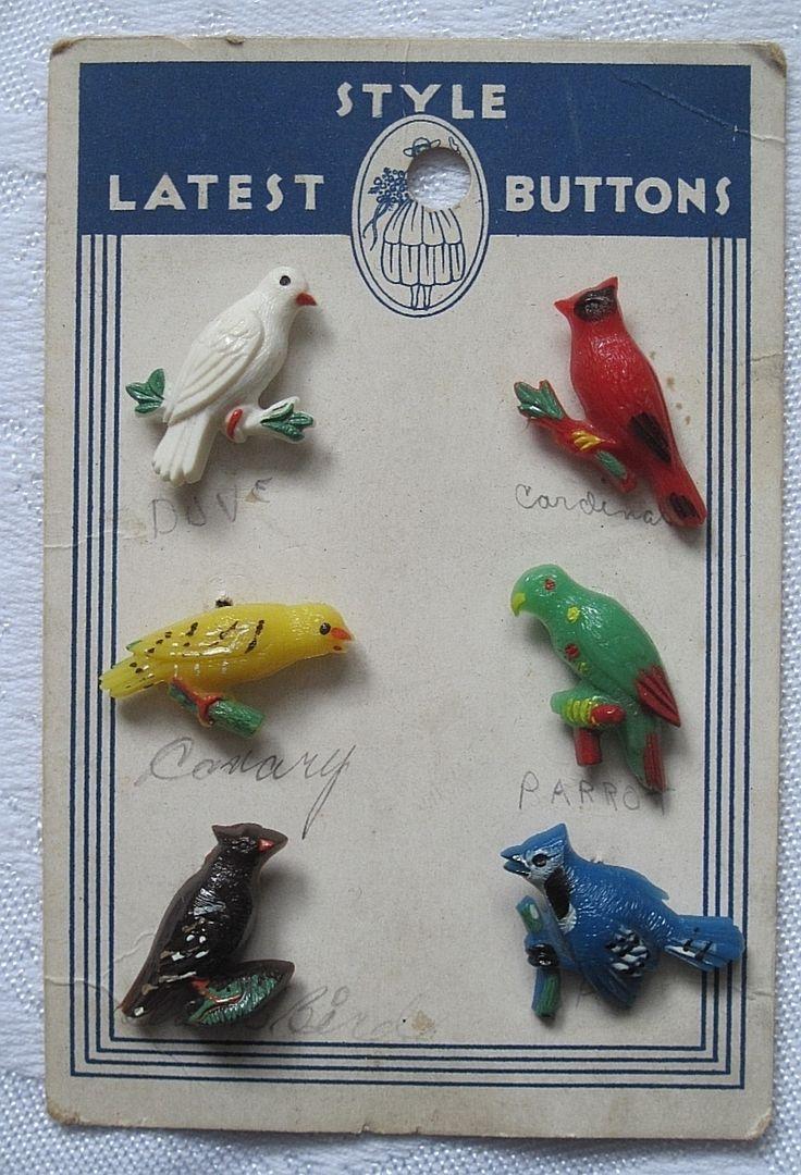 Vintage Bird Buttons --realistics (goofies)