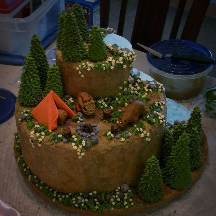 Great Outdoors Cake  This Was My Entry For A Local Cake