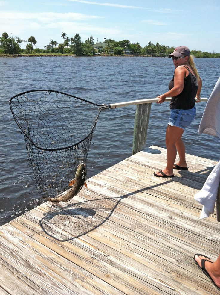15 best pine island images on pinterest pine island for Florida fishing regs