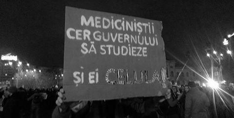 Colectie de pancarte de la proteste | Dana Gonț
