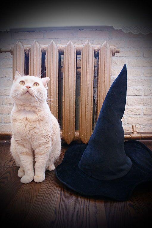 Купить Ведьмина шляпа, карнавальная - чёрный, однотонный, ведьма, шляпа, хелоуин, велюр