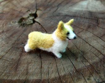 Miniature Corgi
