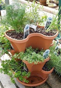 List of herbs for container gardening, and a list of those that prefer partial shade.