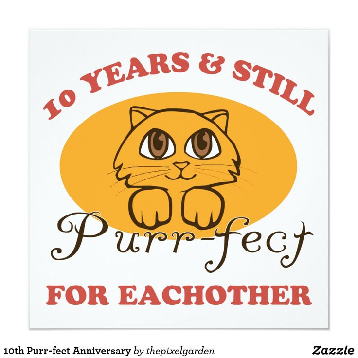 10th Purr-fect Anniversary Card. An Adorably Funny Wedding