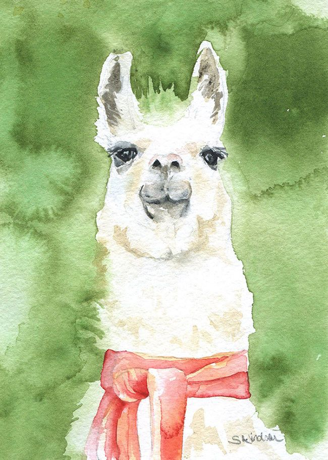 Llama with a Scarf watercolor giclée reproduction. Landscape/horizontal orientation. Printed on fine art paper using archival pigment inks. This quality printing allows over 100 years of vivid color i