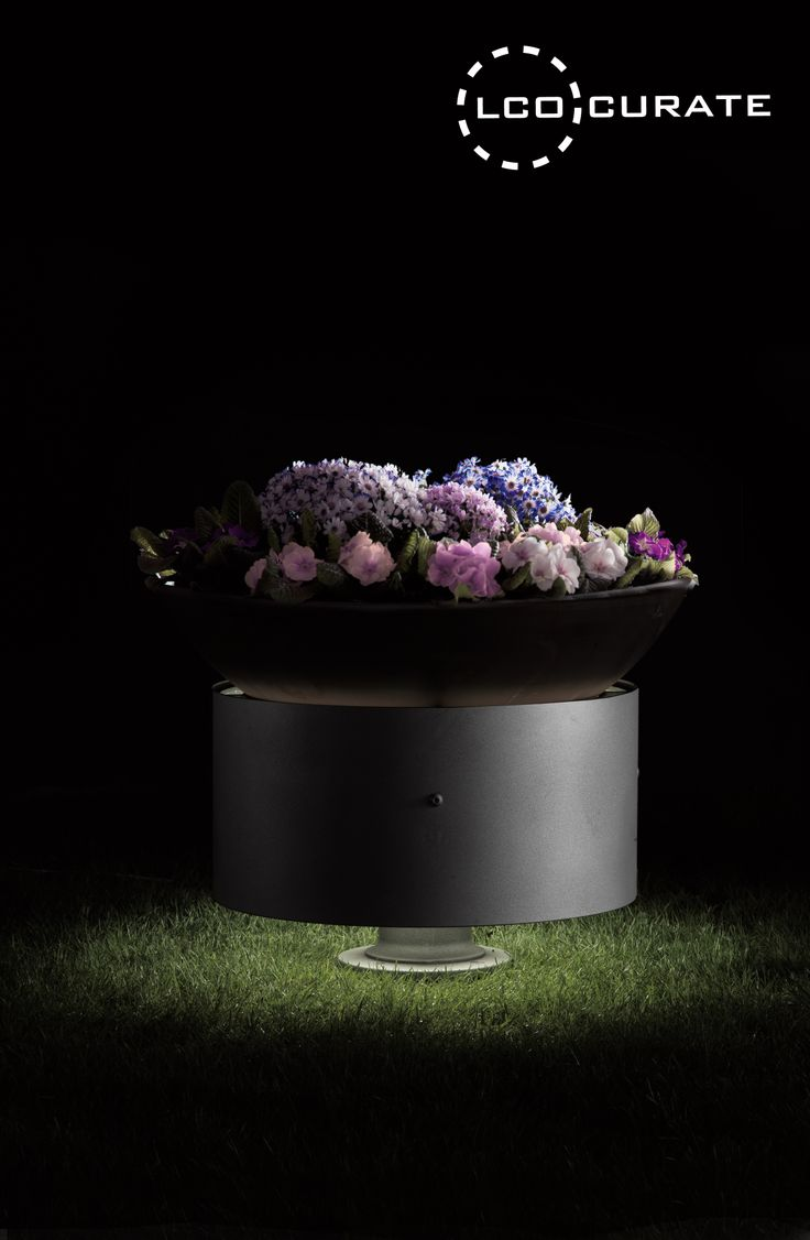 Bole by Torremato, distributed exclusively by LightCo Pty