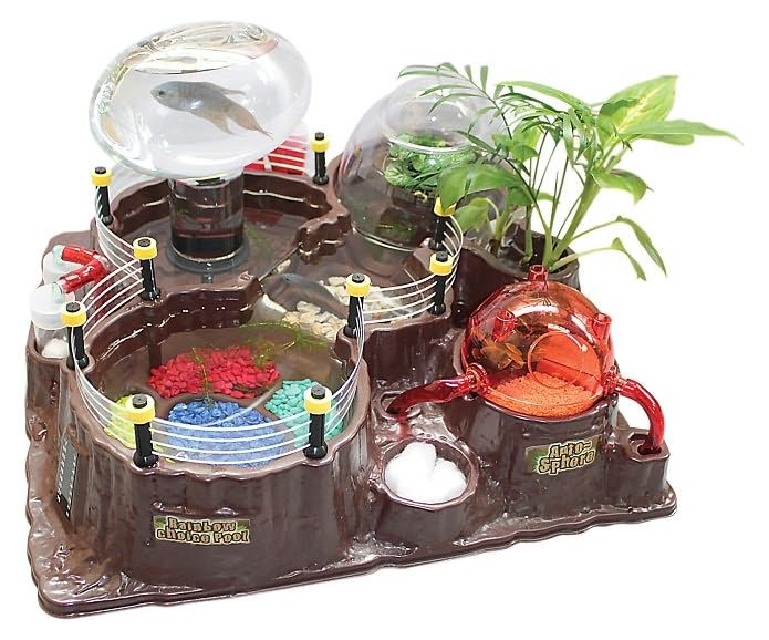 Geek Toys Science : Best fish tanks and terrariums images on pinterest