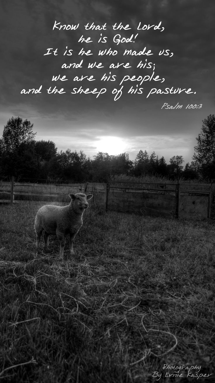 Bible Verse. Photography By Ernie Kasper Know that the Lord, he is God! It is he who made us, and we are his; we are his people, and the sheep of his pasture. Psalm 100:3