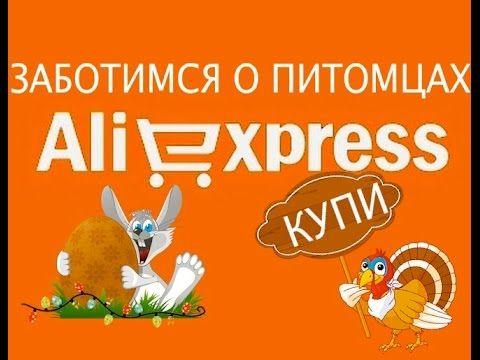 Товары для животных на Алиэкспресс.