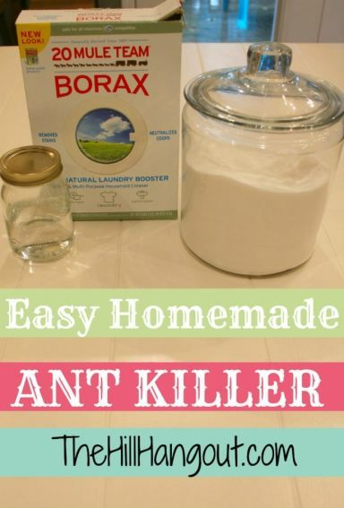 how to kill ants for good