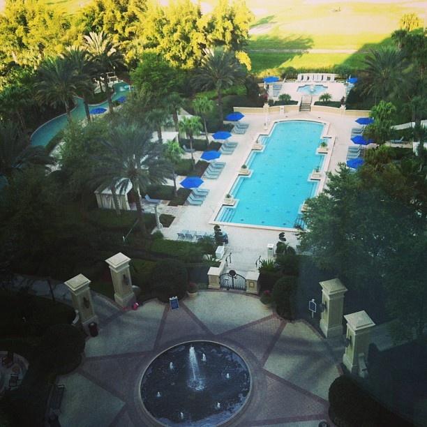 Omni Resort in Orlando Florida. Possible wedding venu