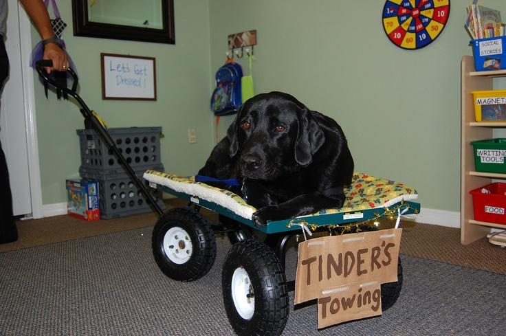 Tinder's Towing! Heavywork (proprioceptive input), Upper