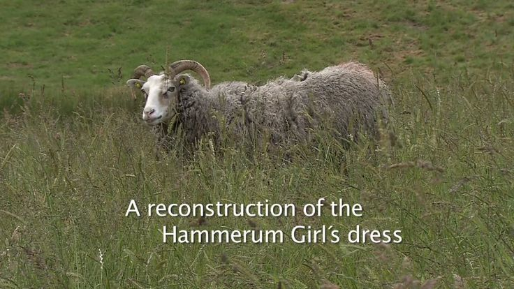 Reconstruction of the Hammerum Girl´s dress from the Danish Iron Age. Produced by Museum Midtjylland, Denmark (www.museummidtjylland.dk)  and Sagnlandet…