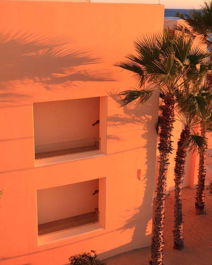 #shadow #tree #boy #trees s #peach #aesthetic