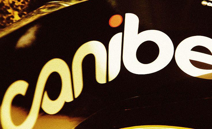 Branding for Canibeat Sticker