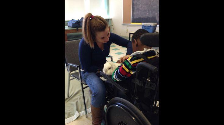 De la zoothérapie à Victor doré, une école spécialisée pour les enfants avec des handicaps physiques et intellectuels. Zoothérapeutique, c'est le meilleur métier du monde. #bestjob #kid #rabbit #school #zootherapie