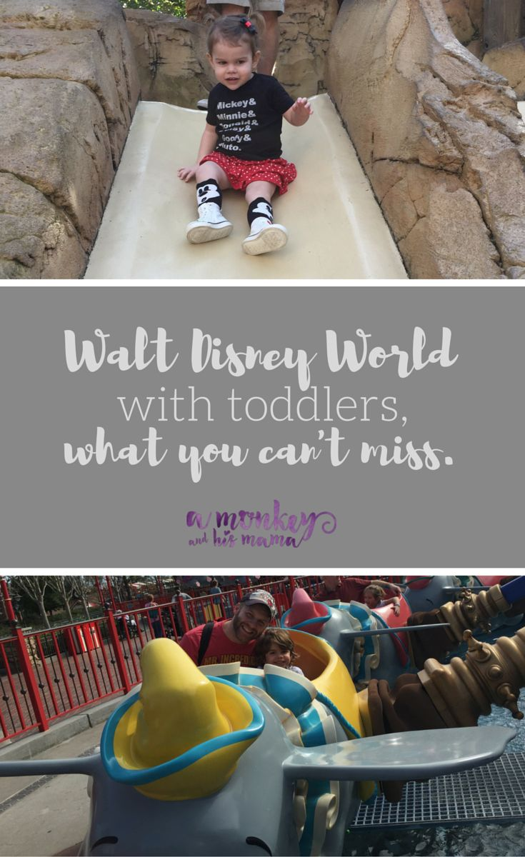 Walt Disney World with toddlers, what you can't miss via a monkey and his mama // Disney with Toddlers