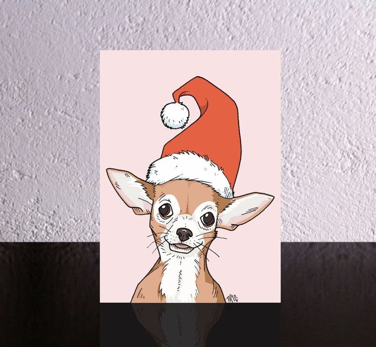 4 Dog Christmas Cards a Chihuahua in a Santa Hat. Xmas dog, chihuahua santa hat.