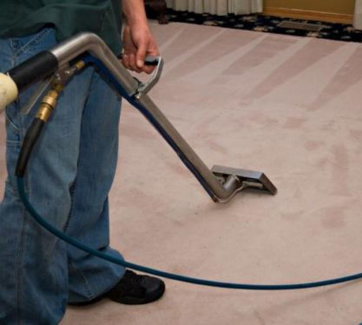 Carpet Cleaning Ideas Professional Adelaide Www Pricelesscleaning