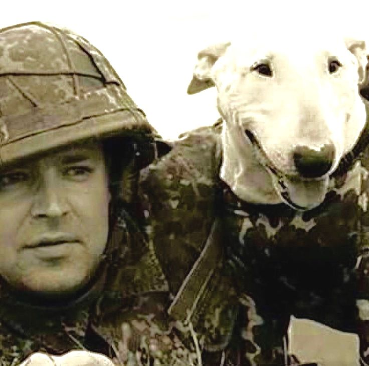 Happy Veterans Day To All Who Served….  Human and Dog…  Sadly Many War Dogs Were Euthanized Or Left Behind In Vietnam After The War Was Over. http://www.vice.com/read/the-us-military-euthanized-or-abandoned-thousands-of-their-own-canine-soldiers-at-the-end-of-the-vietnam-war-253