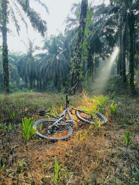 Bikerumor Pic Of The Day: Kuantan, Malaysia
