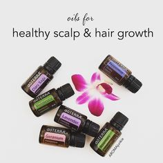 If you struggle with dry/flakey scalp or thin/brittle hair, each of these oils help condition, strengthen, and promote a healthy scalp and hair growth (Sandalwood is great too). They can also ward off hair critters if you know what I mean.  Here are a few easy ways to apply  1. Massage 2-5 drops of each into scalp.  Let sit for 30 minutes, then wash as usual.  Repeat as needed.  2. Make a conditioning spray (I do this for my daughter and myself - we call it Mermaid Spray) - In a 4 oz. glass…