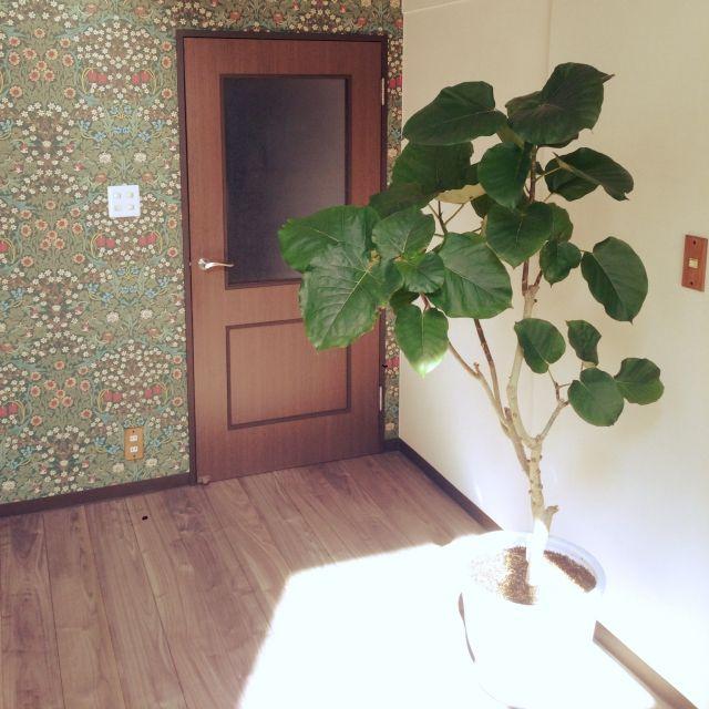 ウイリアムモリスの壁紙 ウイリアムモリスのインテリア実例 | RoomClip (ルームクリップ)