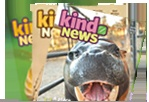 Kind News reveals the beauty and wonder of the creatures who share our world while also exploring the challenges they face
