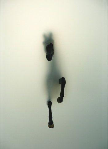 Subversion by Miriam Sweeney