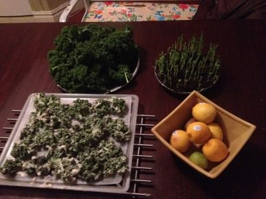 DIY - Grönkålschips De Luxe | Greenfoot - Effektiva Mikroorganismer