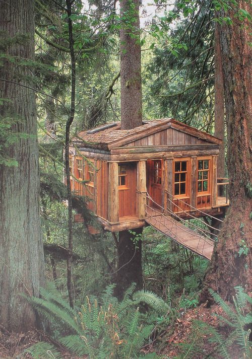 Log cabin in the trees. Does it get better?